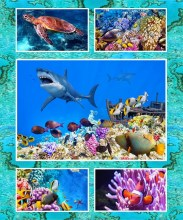 A-The-Great-Barrier-Reef-8063-1